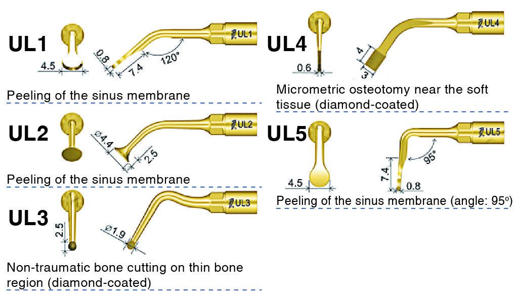 239-3- Sinus lifting tip-WOODPECKER